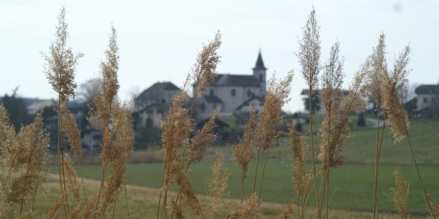 Commune de Juvigny